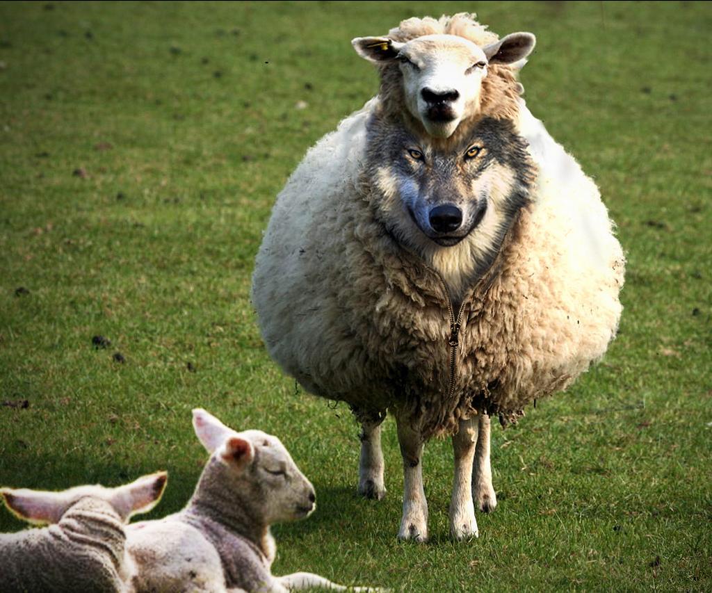 Съвременните лъжеучения (част 4): Вълците в овчи кожи