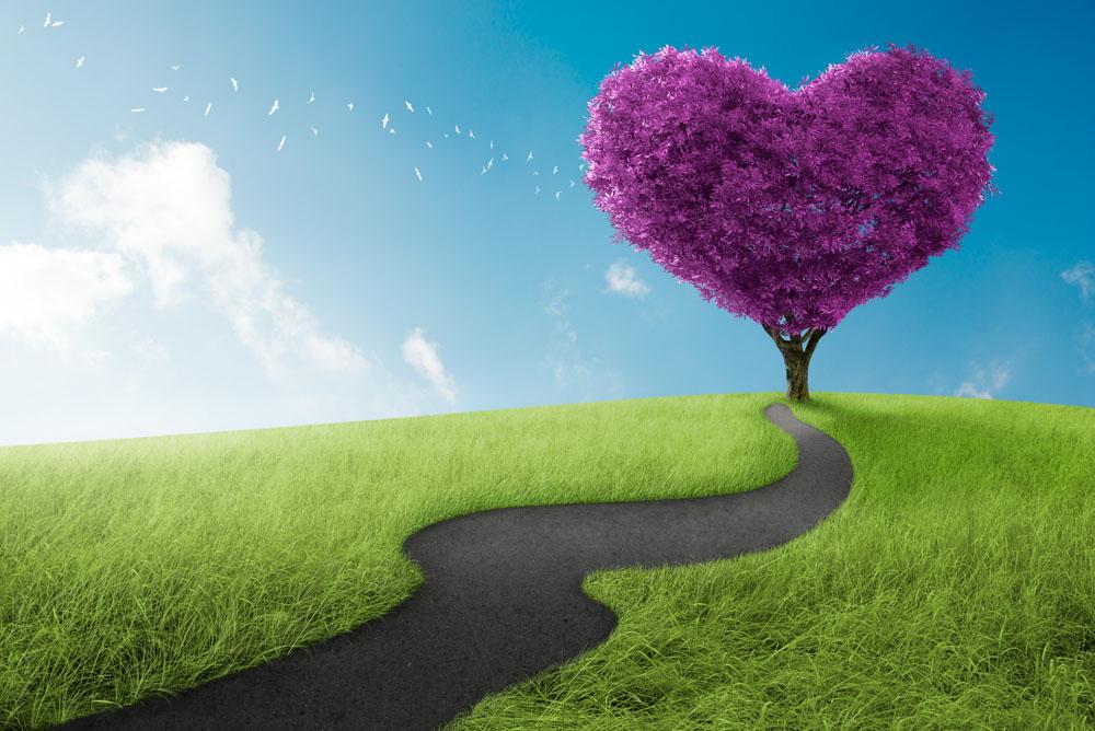Учителя: Любовта носи живот, носи нежност, деликатност, привлекателност – всички тия качества, които осмислят вътрешния живот