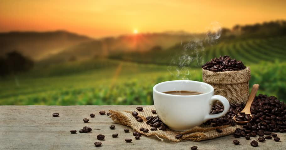 Рудолф Щайнер за въздействието на кафето