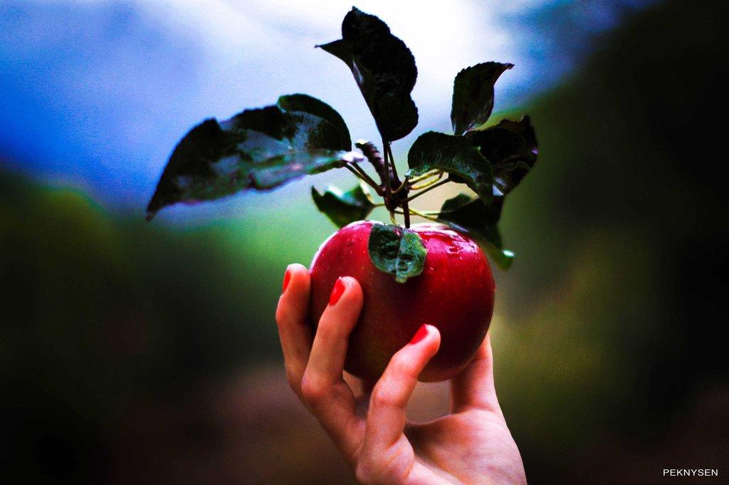 Учителя за удоволствията, спиращи духовното развитие (част 3)