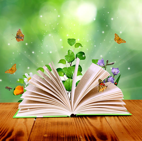 Учителя: Знание без Любов възгордява, но знание с Любов осмисля живота