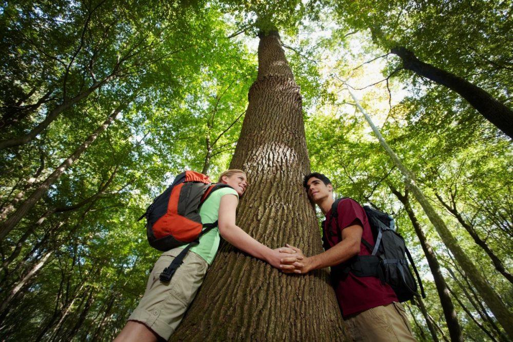 Учителя: Природата е нещо живо и разумно, с което може да се влезе във връзка